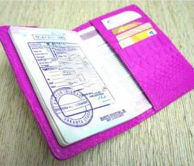 Snakeskin Passport Cover. Hot pink leather passport holder.